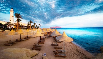 Hotel offers in Sharm El Sheikh