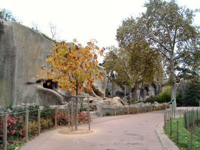 Visit Paris Zoo