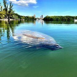 Historic Virginia Key Beach Park Beachvvvv