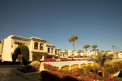 Travel Offer Grand Oasis Resort Sharm El Sheikh