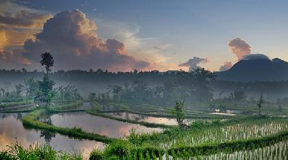 Travel Offer Bali Indonesia 07 Days