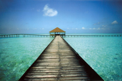 "Travel Offer Honeymoon trip ""Maldives """