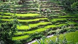 Travel to  Indonesia Tours in  Indonesia Travel Offers to Indonesia