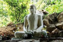 Travel to  Sri Lanka Tours in  Sri Lanka Travel Offers to Sri Lanka
