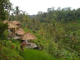 رحلات   إندونيسيا رحلات فى  إندونيسيا عروض سياحيه إلى إندونيسيا