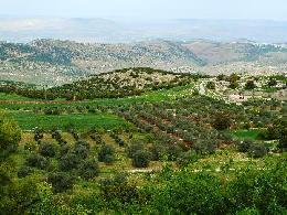 رحلات   الأردن رحلات فى  الأردن عروض سياحيه إلى الأردن